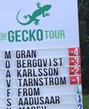gecko-leaderboard